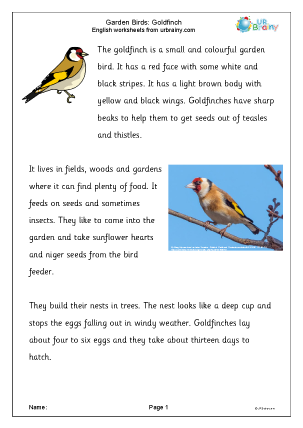 Preview of worksheet Goldfinch