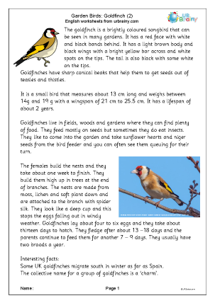Preview of worksheet Goldfinch 2