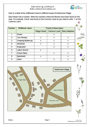 Preview of worksheet Data handling: wild flowers